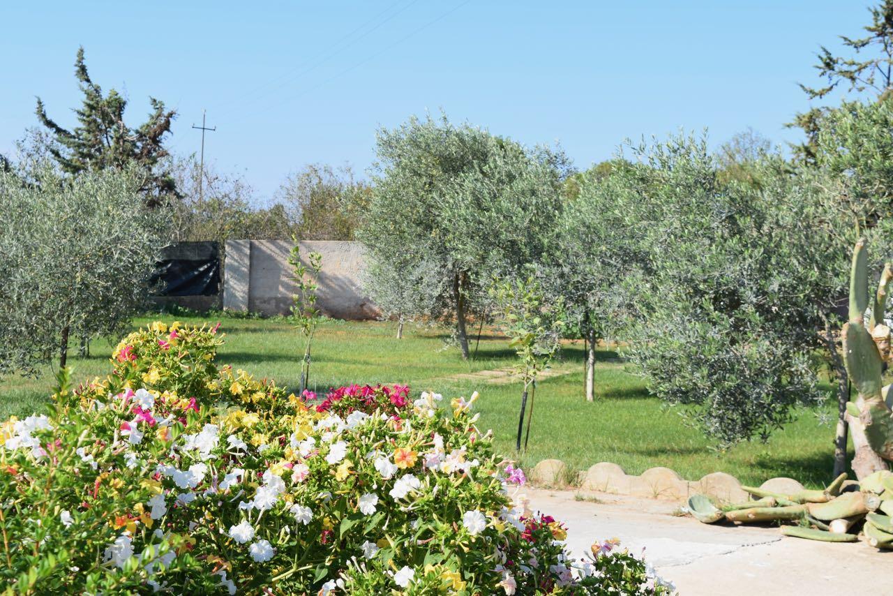 Villa Alghero (noordwesten) 18