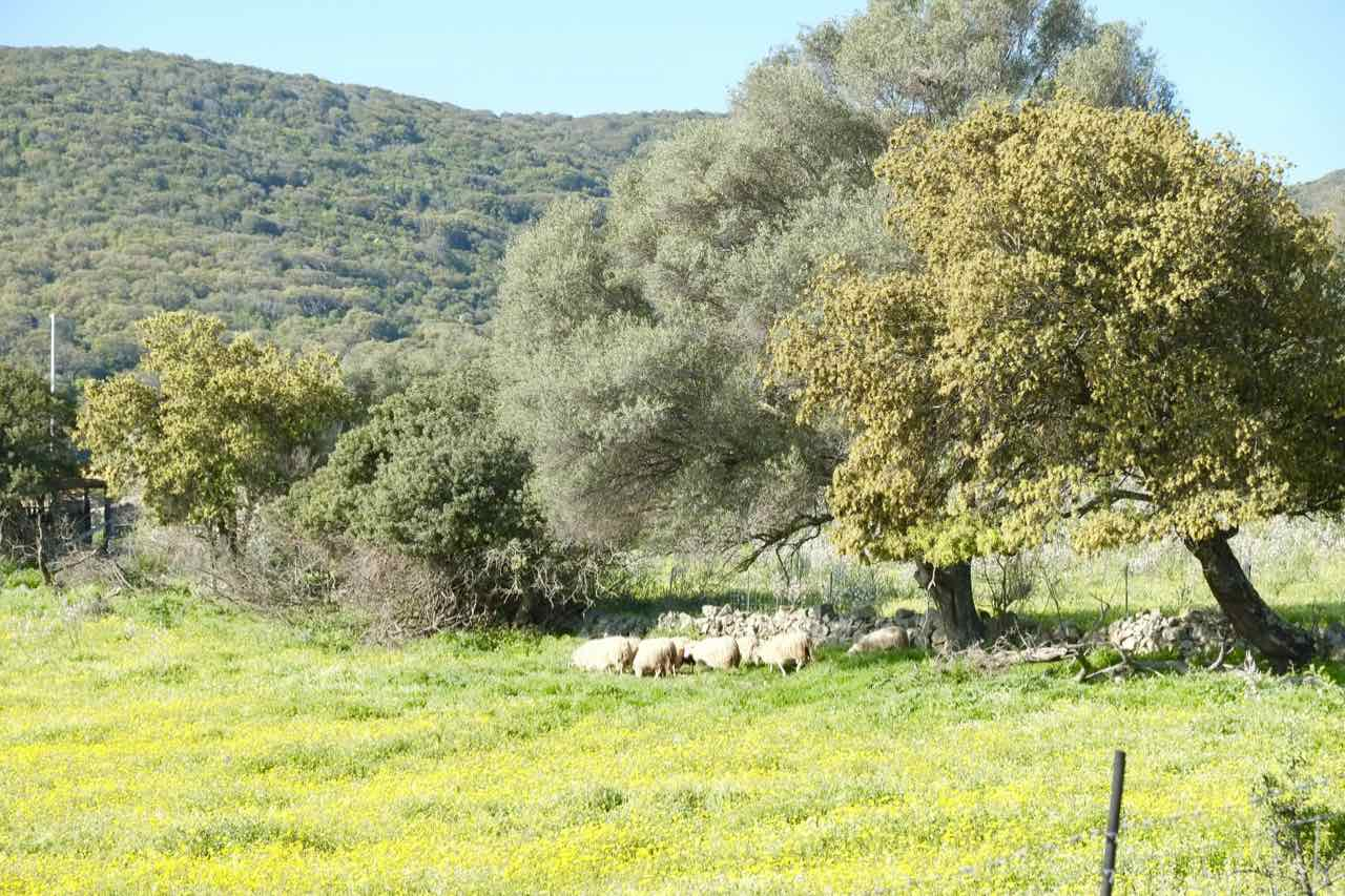 La Cugara Country (noorden) 4