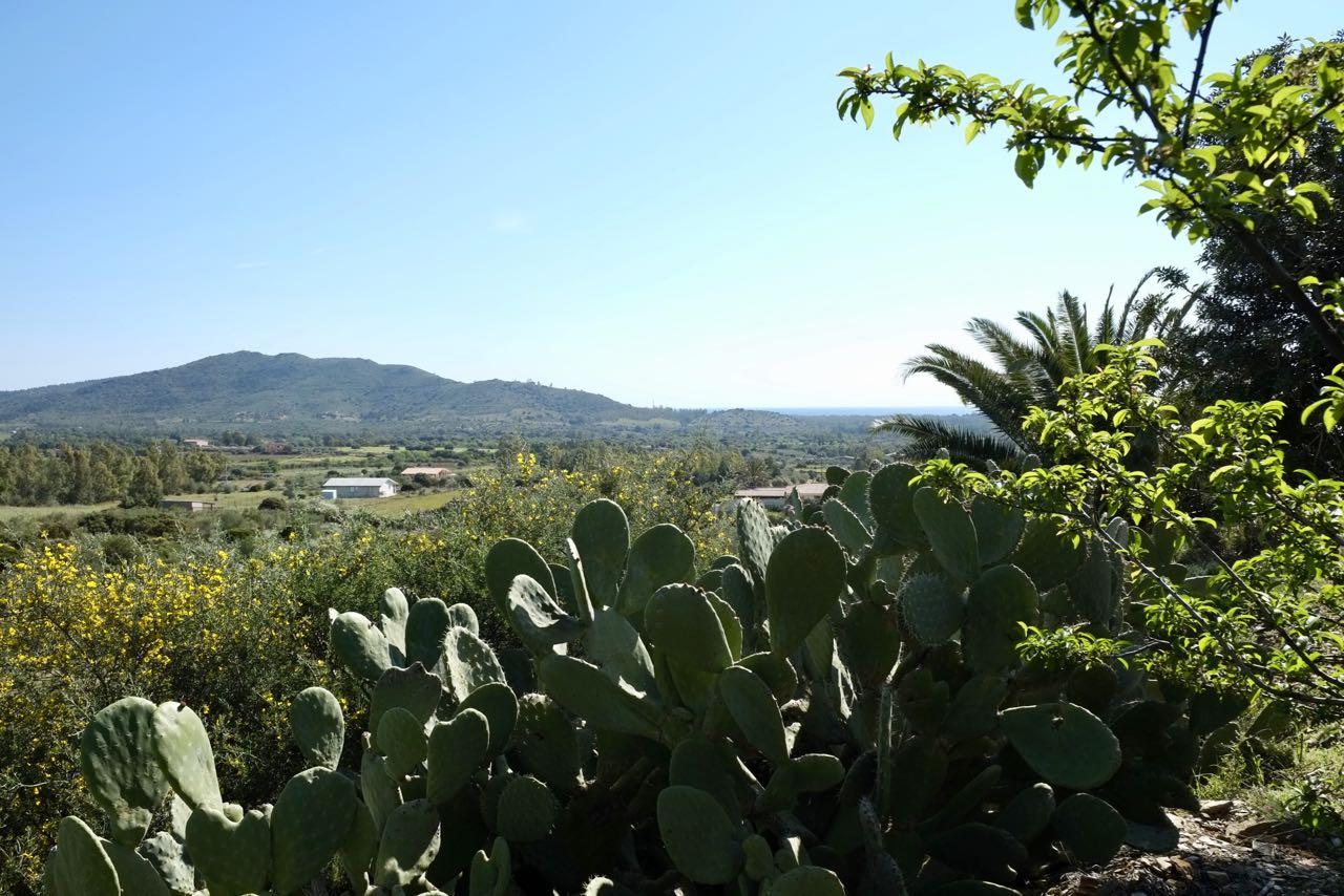 Villa Sirene (zuidoosten) 8