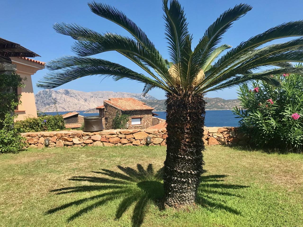 Casa Paola - Coda Cavallo Resort (noordoosten) 0