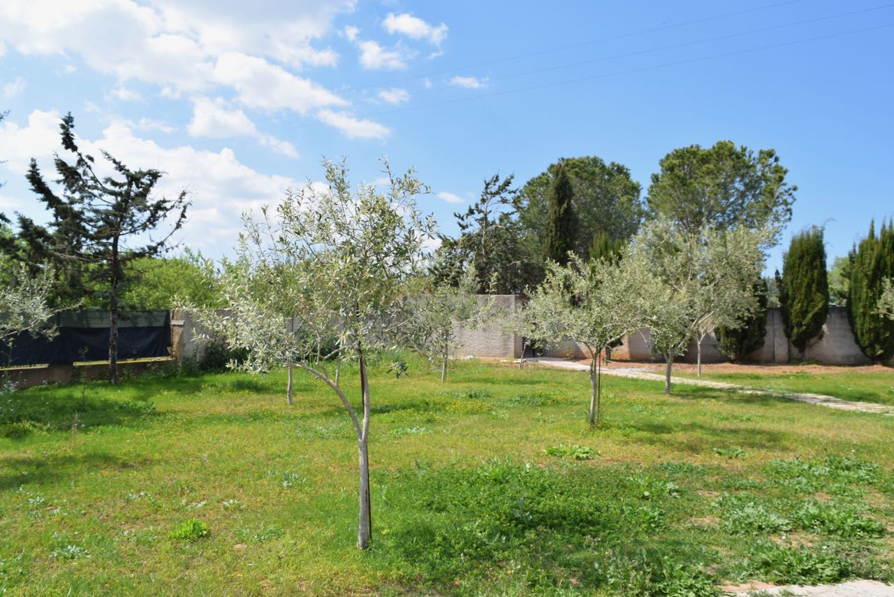 Villa Alghero (noordwesten) 6
